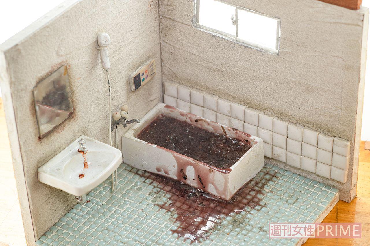 小島美羽 写真で見せられない『孤独死』の現場をミニチュアで再現する26歳女性の挑戦 | 週刊女性PRIME [シュージョプライム] | YOUのココロ刺激する